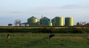 incentivi-biogas-L-ZVc0FT