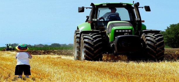 Mipaaf e Intesa Sanpaolo: investimenti per la filiera agroalimentare