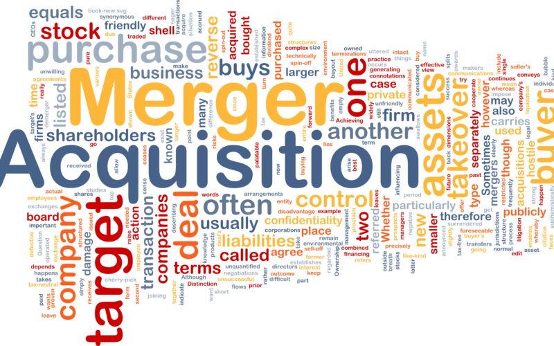 Pmi. Merger & Acquisition per sopravvivere