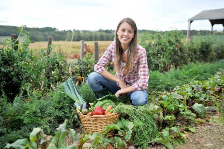 Calabria: 74 milioni per i giovani agricoltori