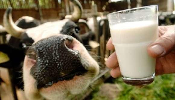 Latte: Martina e Calzolari plaudono le misure Ue