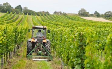 Inail stanzia fino a 45 milioni destinati agli agricoltori