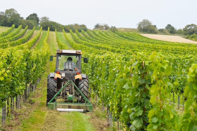 Trattori e macchine innovative, indetto da Inail il bando Isi agricoltura 2016