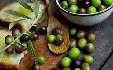 Ci sono 32 milioni di contributi per l'olivicolo-oleario