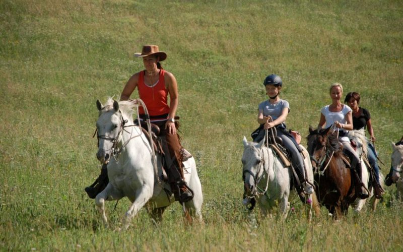 Turismo Equestreal via la 1a Edizione Nazionale delle Giornate di Co.Mo.Do.