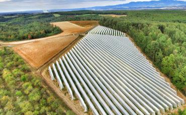 L'attenzione verso la sostenibilità per il leader Arrigoni