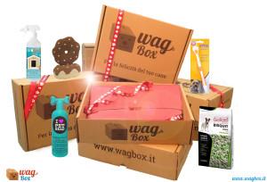 WagBox San Valentino prodotti copy