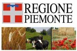 Il Piemonte va anche a trazione familiare