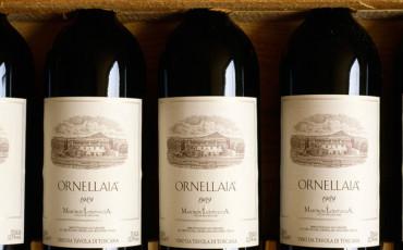 Investimenti: il vino rende il 160%