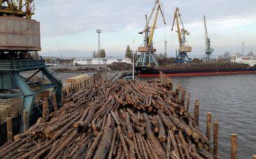 Krostar: la logistica del legno passa da qui