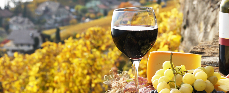 Toscana: contributi per le imprese agroalimentari grossetane