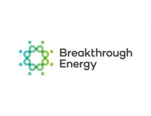 BlackRock Foundation stanzia 100 milioni di dollari per l'energia pulita